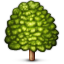 deciduous_tree